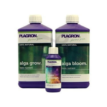Tripack Plagron