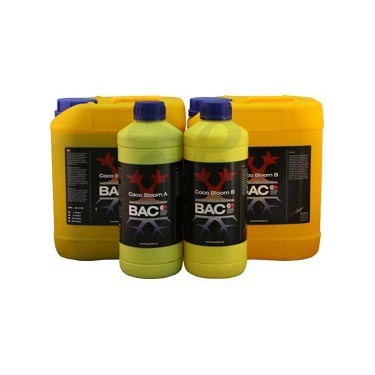 BAC Coco Bloom A+B