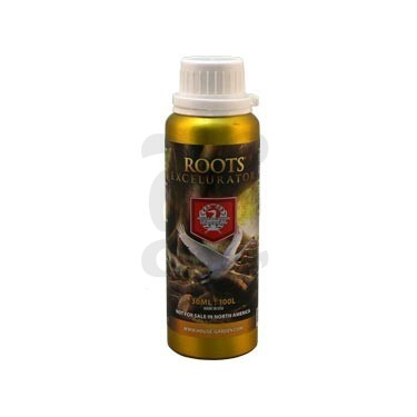 Roots Excelurator Gold