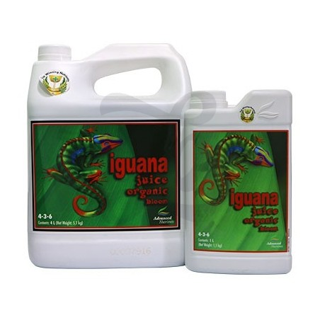 Iguana Juice Organic Bloom