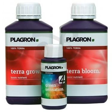 Plagron Easy Pack Terra