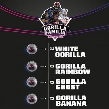 Gorilla Familia Mix