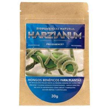 Harzianum