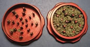 ¿como hacer un bizcocho de marihuana?